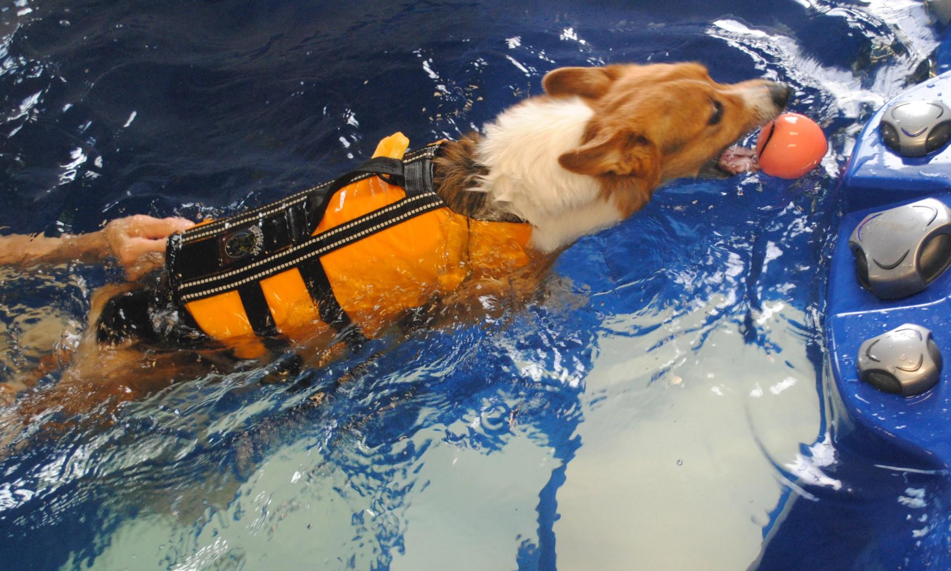 Riverside Rehab Aquatic Therapy