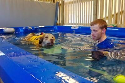 Celeste Swimming
