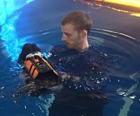 Riverside Rehab Rehabilitation Swim