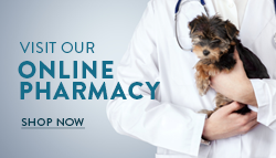 Riverside Veterinary Hospital Online Pharmacy