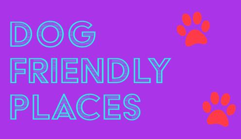 Riverside Veterinary Hospital dog friendly places