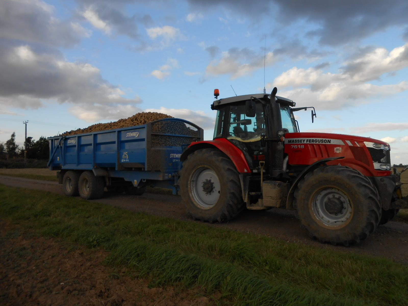 Massey Ferguson 7618 and Stewart Trailer Carting Potatoes