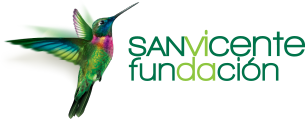 San Vicente Fundación