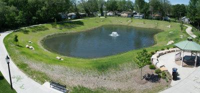 Pond Remediation