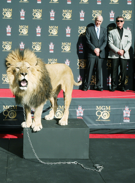 MGM CEO Gary Barber and Sylvester Stallone with Leo the Lion.