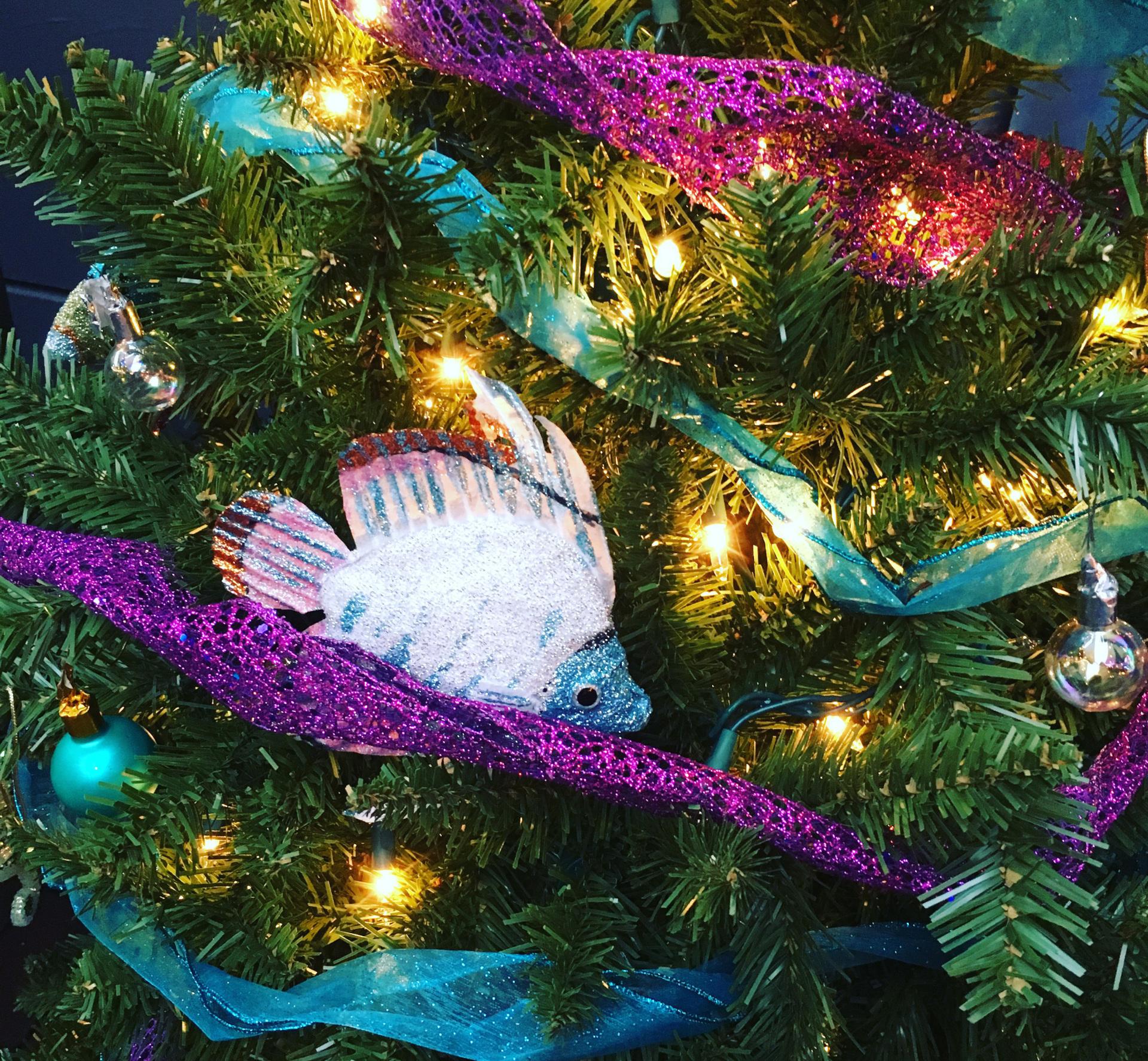 Happy Holidays from Milla Agai Photography