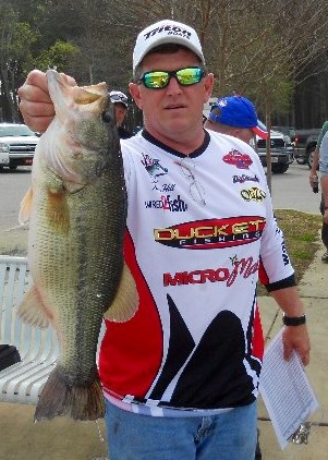 6.5 lbs Bass -- caught by Tony Hill on Pickwick Lake