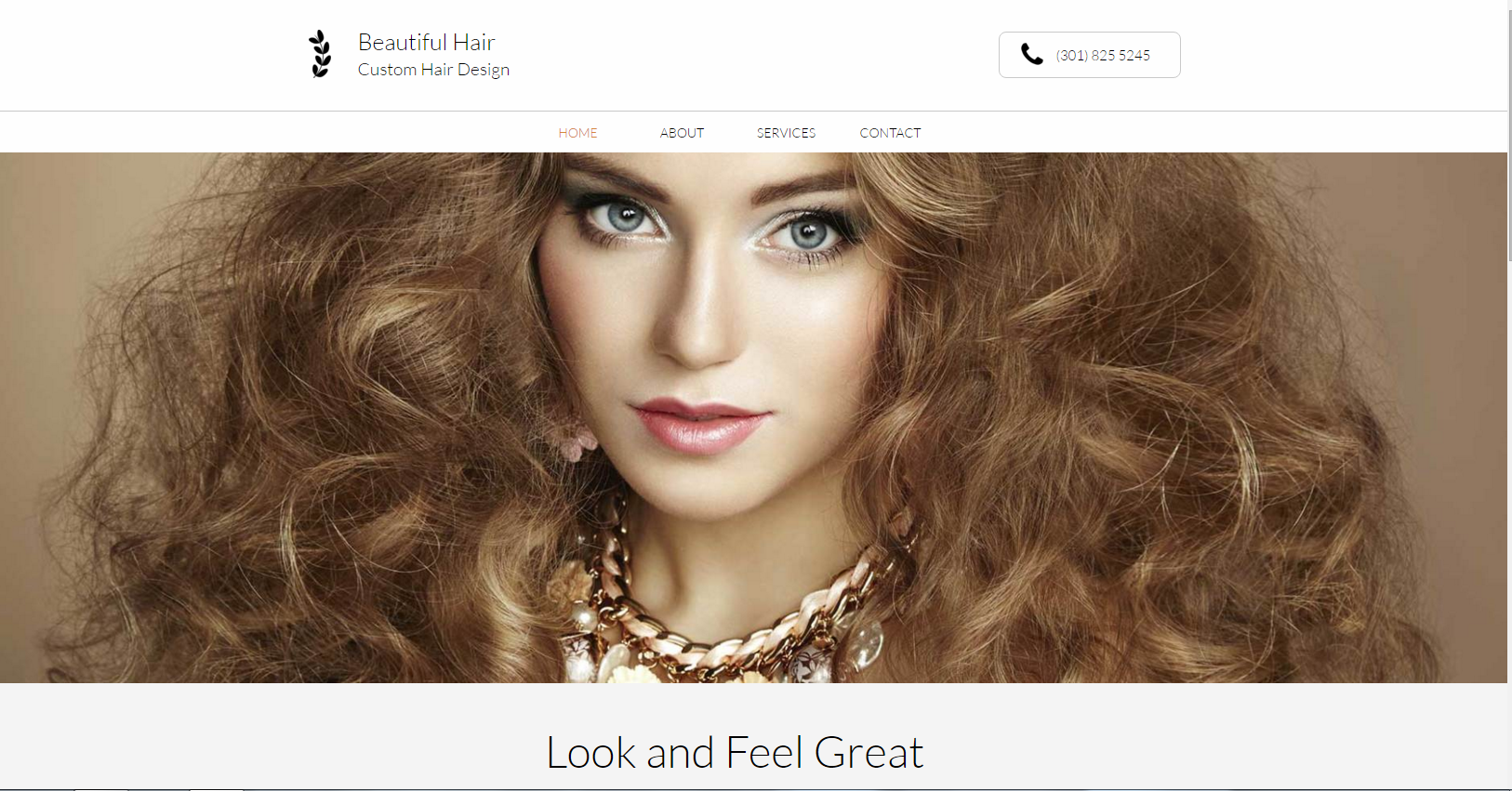 hair salon web design picture