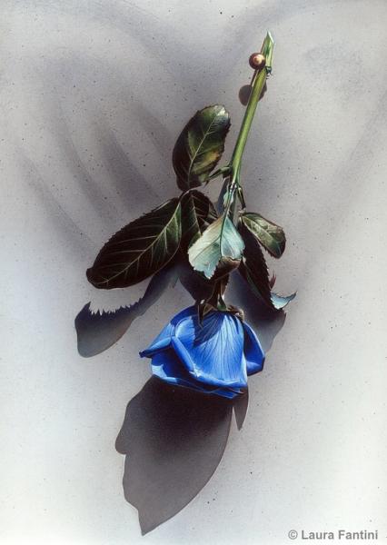 L'Anima Azzurra