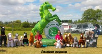 Pony Rides, Medieval Fayre, Sandwich Showground, East Kent events