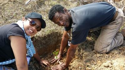Tree Planting in Andilamena