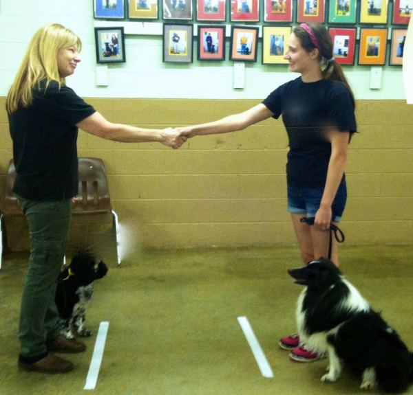 Canine Good Citizen Prep+Test