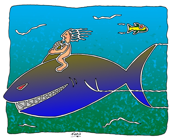 Shark Hiking