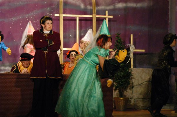 12 Dancing Princesses 2009