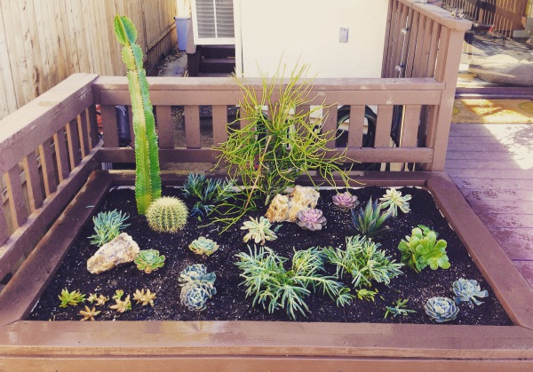 Once a Jacuzzi, Now a Container Garden