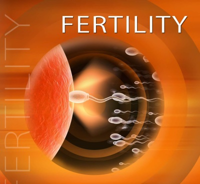4 Steps for Tracking Your Fertility