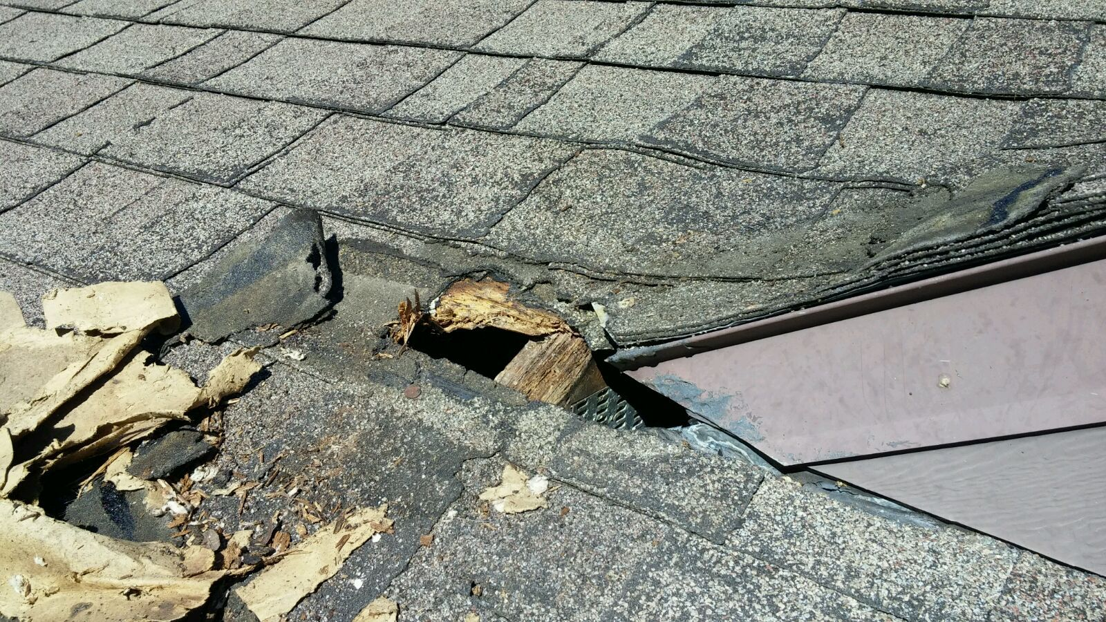 Squirrels  destoyed this roof in Ocala