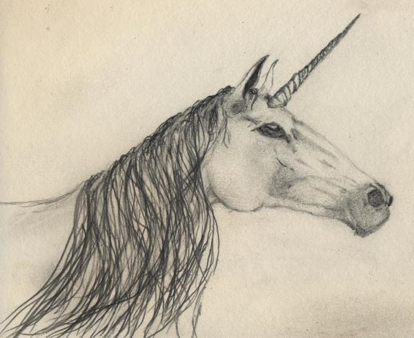 Brian White Unicorn Sketch
