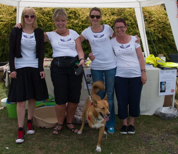 Angel Watch Rescue Charity Dog Show