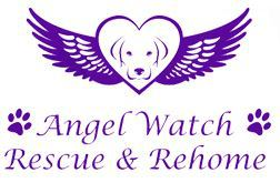 Angel Watch Rescue