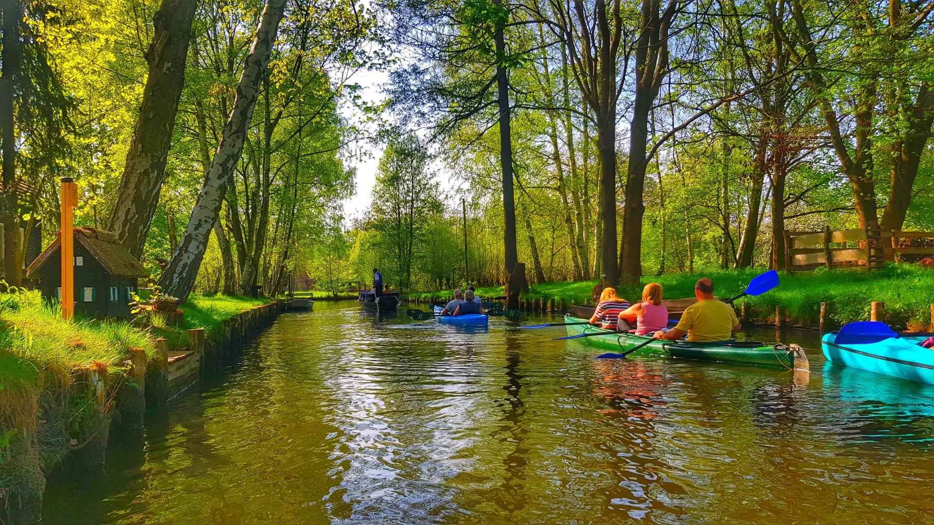 Lübbenau קפיצה אל הטבע - שייט בתעלות העיירה