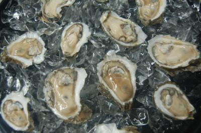 Louisiana Oyster