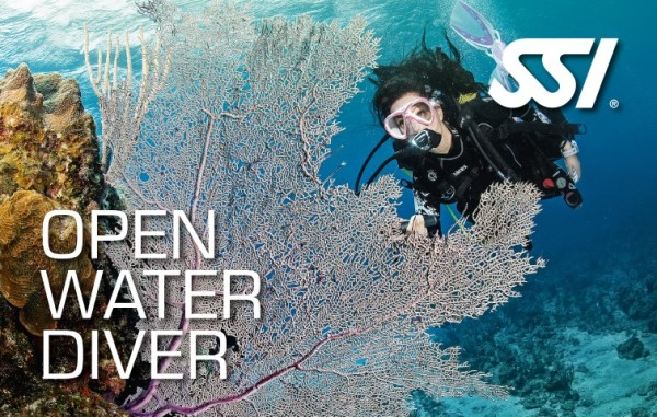 Open Water Diver: Pool & Academics
