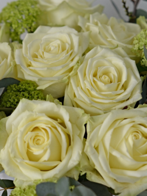 Blousy white bouquet of perfumed white naomi roses.