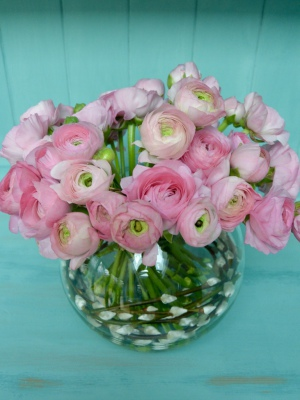 Pink Ranunculus with pussy willow in a fishbowl vase.