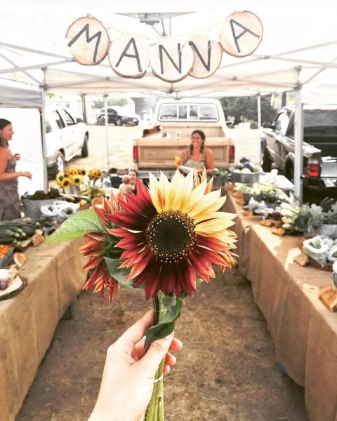 Welcome to the Manna Farm Blog!