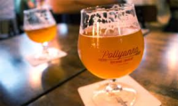 Pollyanna Beer