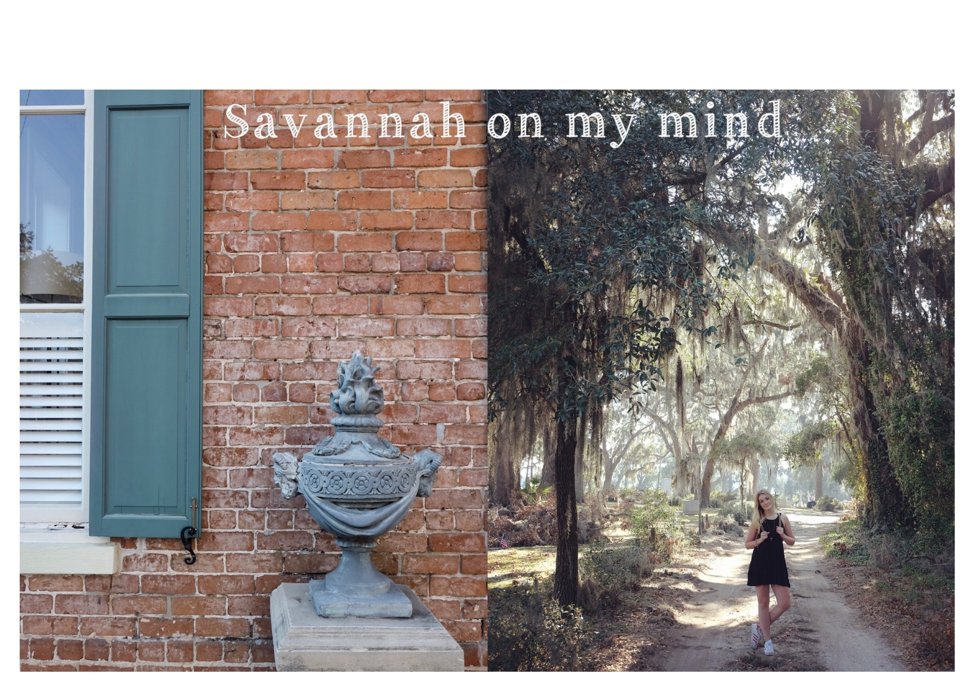 Savannah on My Mind