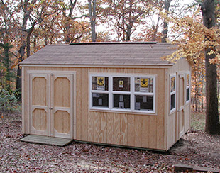 Side view of a 10x15x9.5 customized shed with lots of windows.