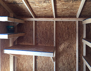 Interior shelving in a 10x12x8.5 back yard shed.