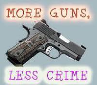 Ignorance on Gun Control