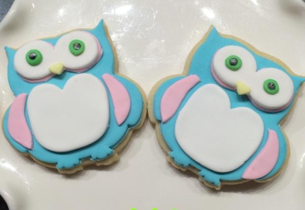 night owl - hoot hoot