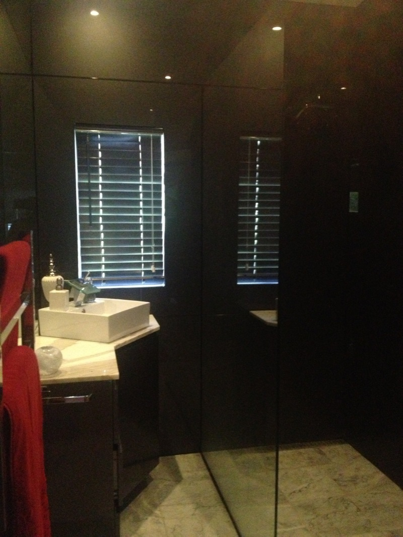 Glass panel bathroom