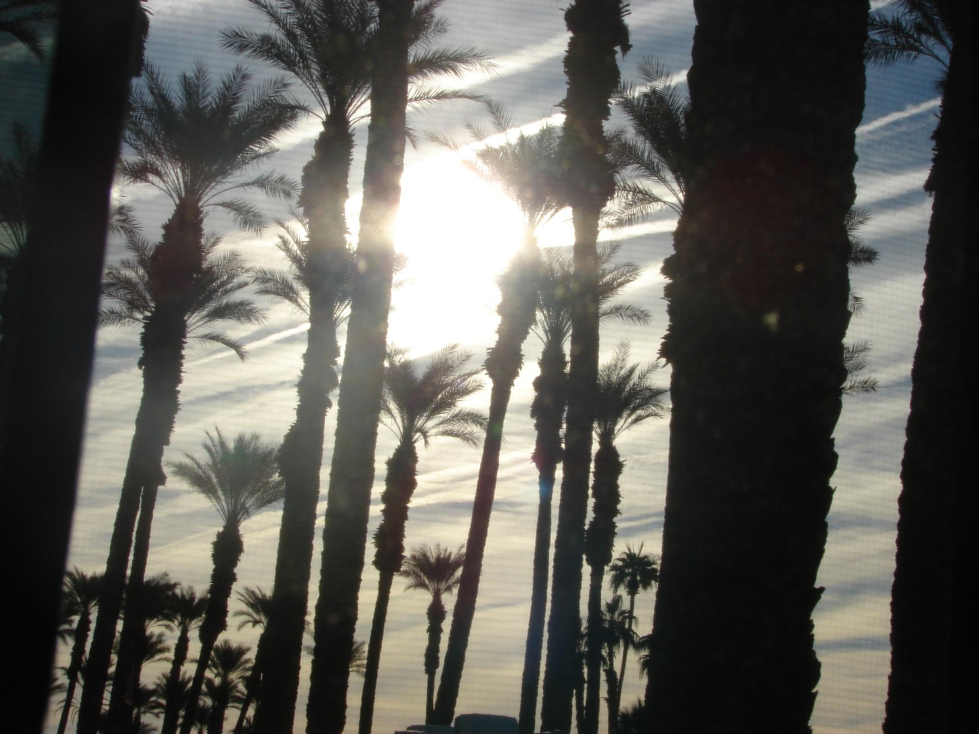 Palm Desert CA