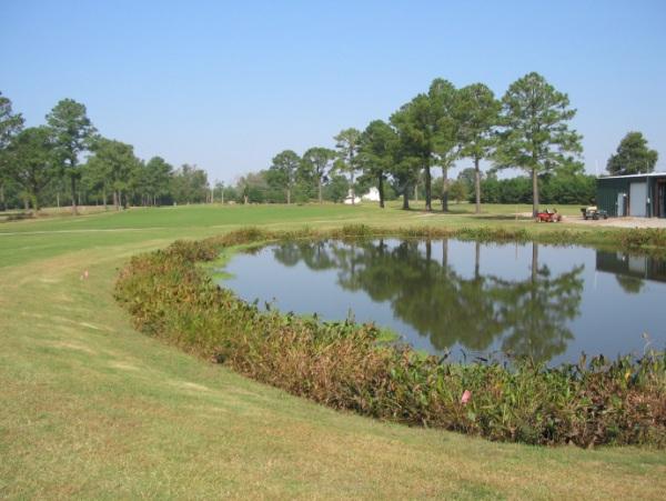 Stormwater pond at Van Wingerden International