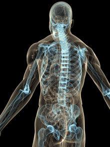 craniosacral therapy spine