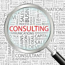 Consulting; Project management; Cognos; Roadmap