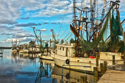 shrimp boats in a cove, fishing boats in a cove