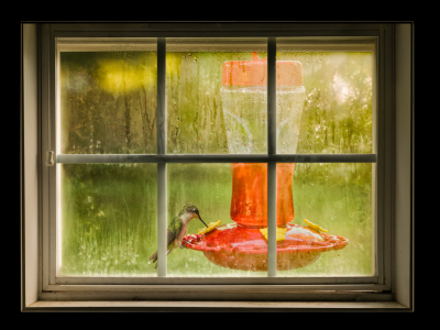 How I combined an old window with an image of a hummingbird feeding.