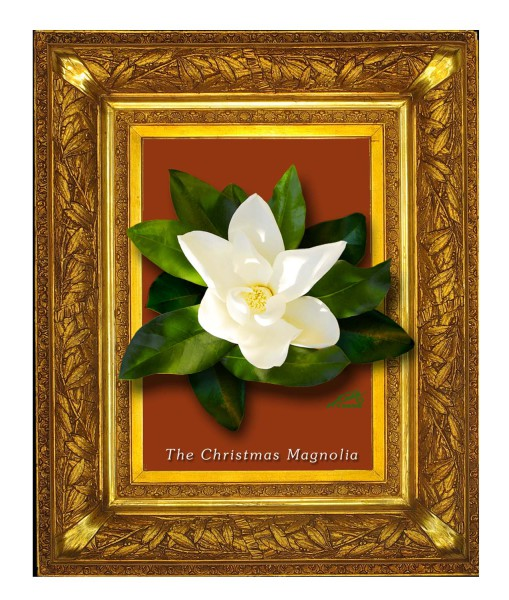 Christmas Magnolia