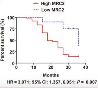 Endo180 reduces survival in liver cancer