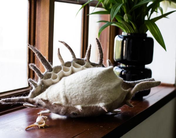 Felted Wool Sea Shell