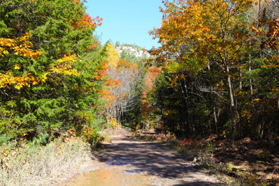 Walzser Road to Iroquois Bay