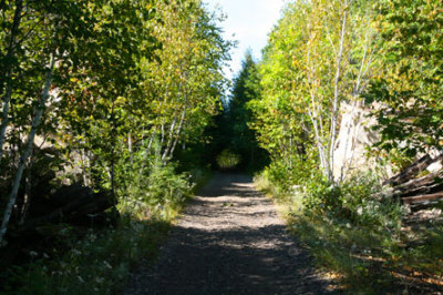 Old Rail Trail to Willisville