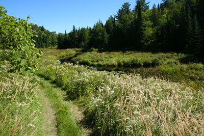Widgawa West River Trail