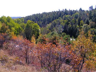 Widgawa Ridge